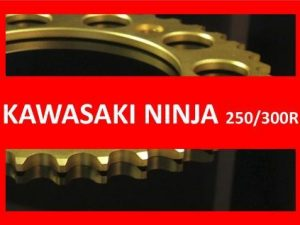 Ninja 250/300R 13-17