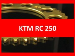 RC 250 14-17